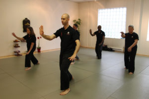 Tai Chi and Meditation Teachers' Training